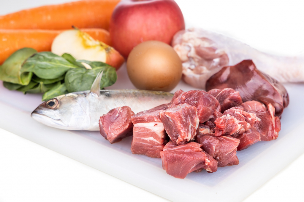 Closeup of ingredients of barf raw food recipe for dogs consisting meat, organs, fish, eggs and